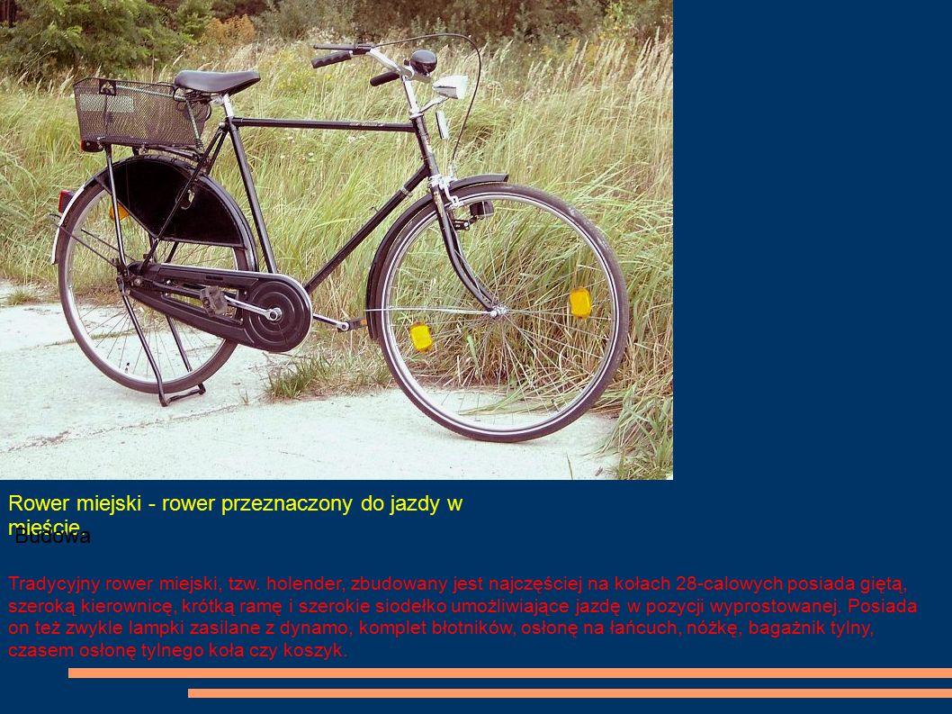 Rower miejski - rower przeznaczony do jazdy w mieście.