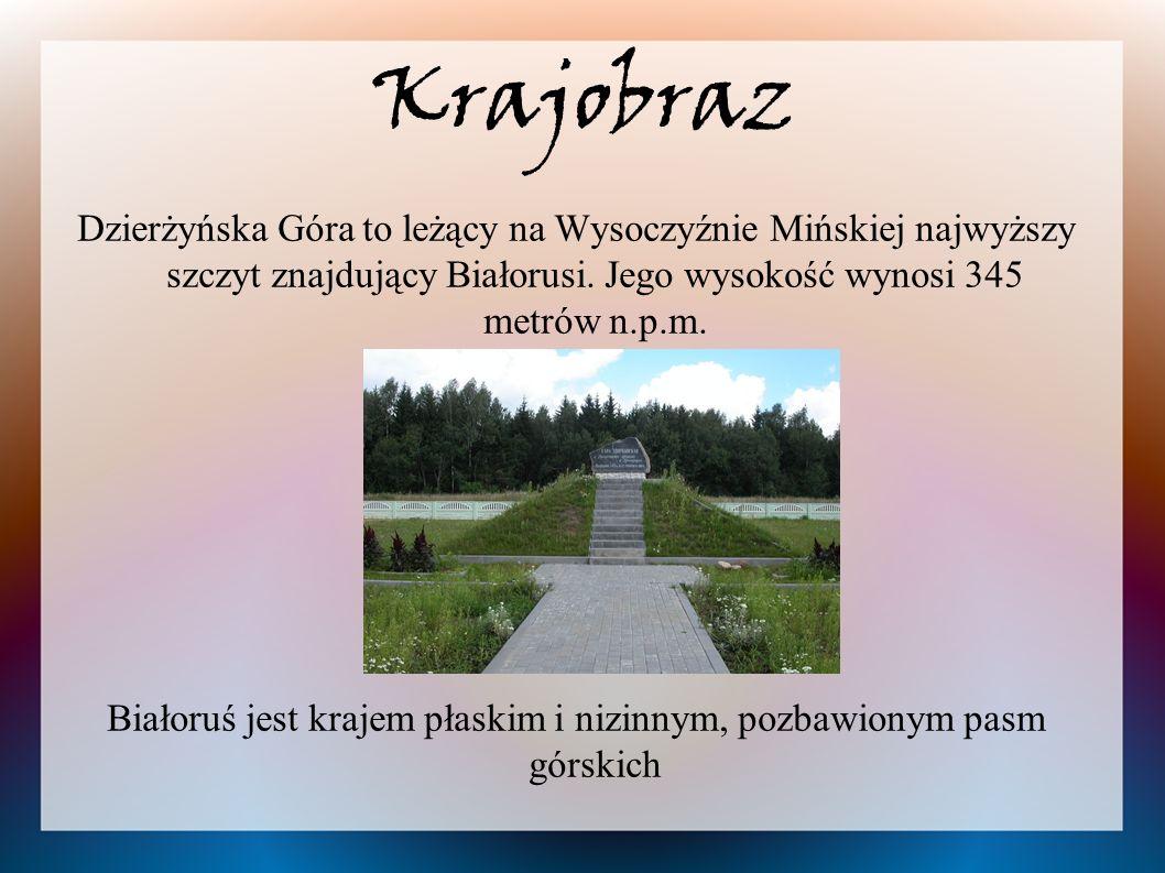 Białoruś jest krajem płaskim i nizinnym, pozbawionym pasm górskich