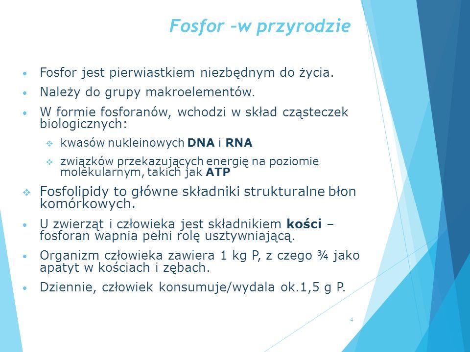Fosfor –w przyrodzie Fosfor jest pierwiastkiem niezbędnym do życia. Należy do grupy makroelementów.