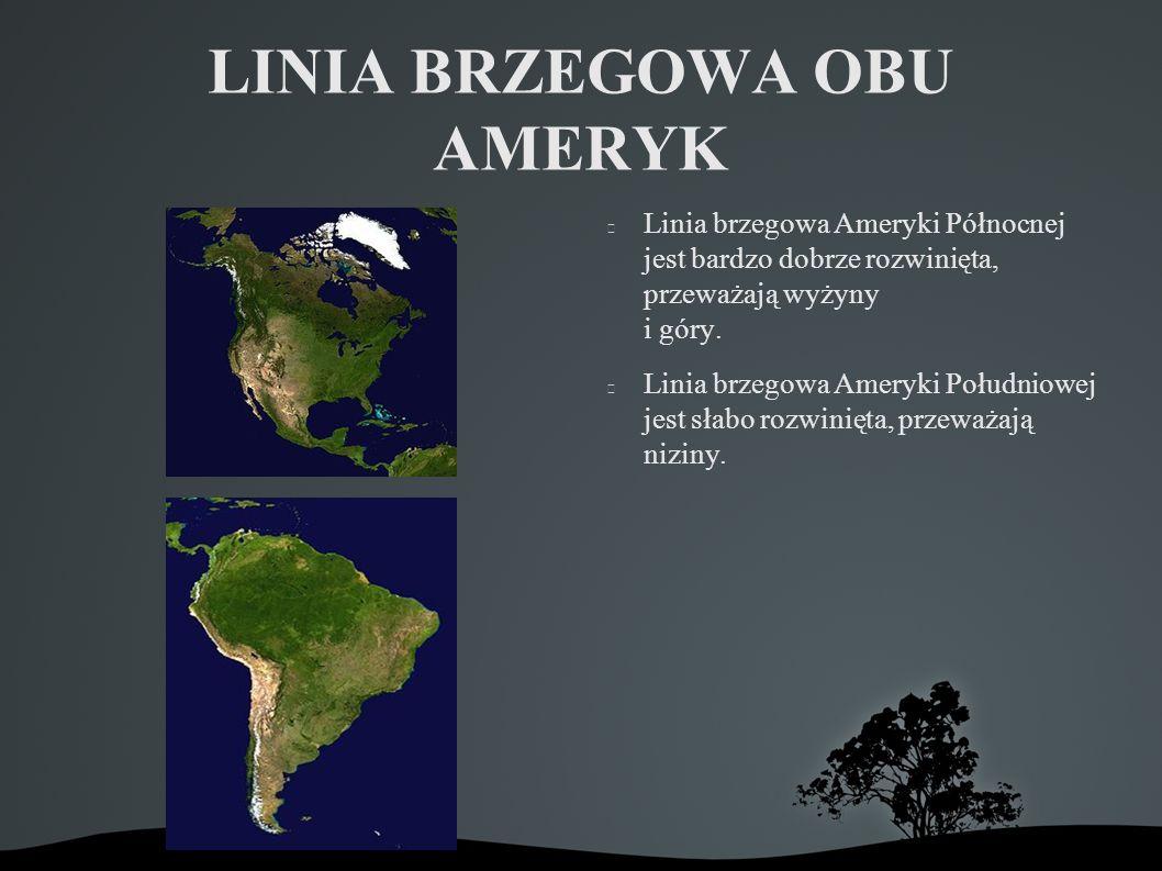 LINIA BRZEGOWA OBU AMERYK