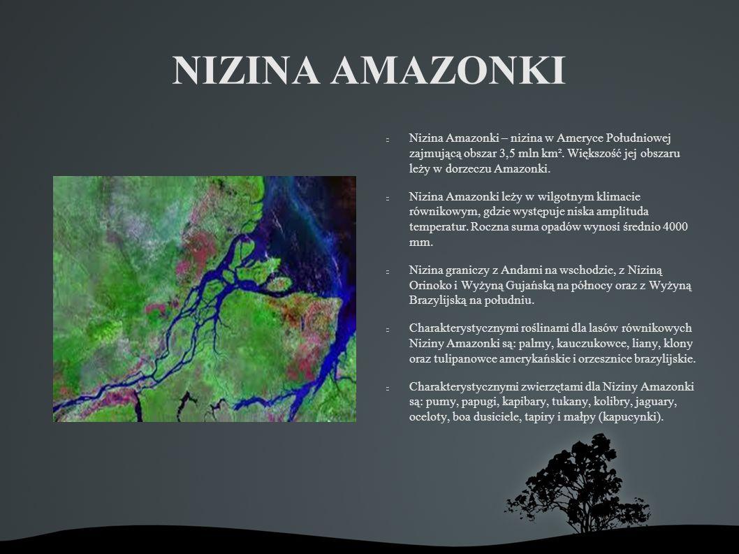 NIZINA AMAZONKI Nizina Amazonki – nizina w Ameryce Południowej zajmującą obszar 3,5 mln km². Większość jej obszaru leży w dorzeczu Amazonki.
