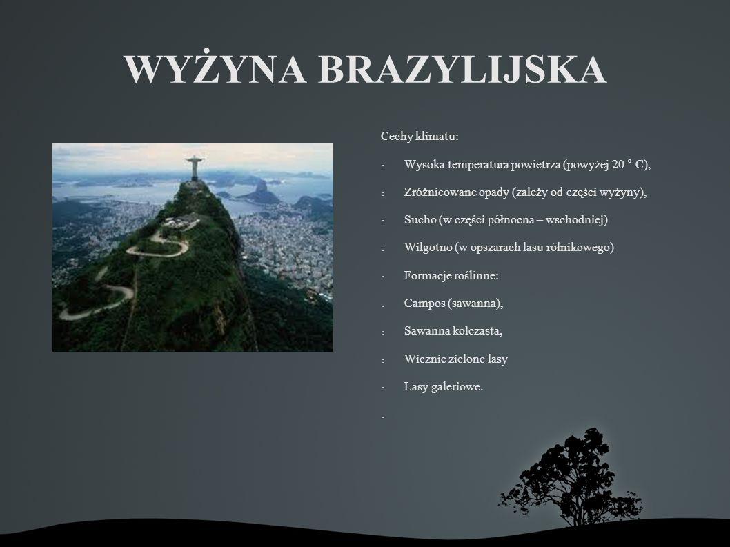 WYŻYNA BRAZYLIJSKA Cechy klimatu: