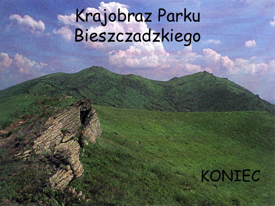Krajobraz Parku Bieszczadzkiego