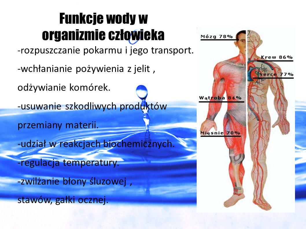 Funkcje wody w organizmie człowieka
