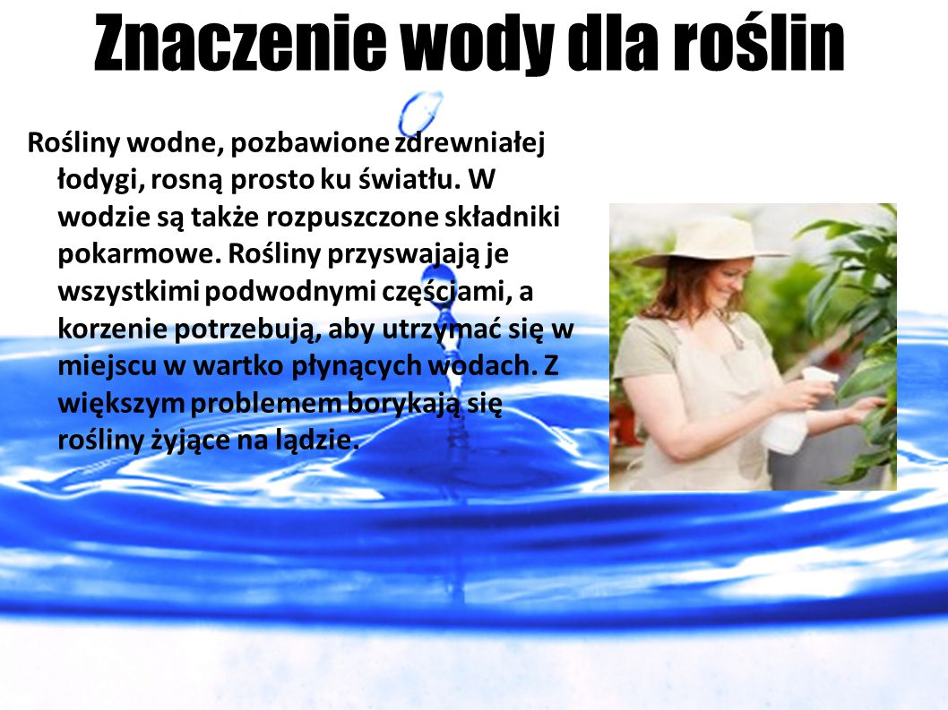 Znaczenie wody dla roślin