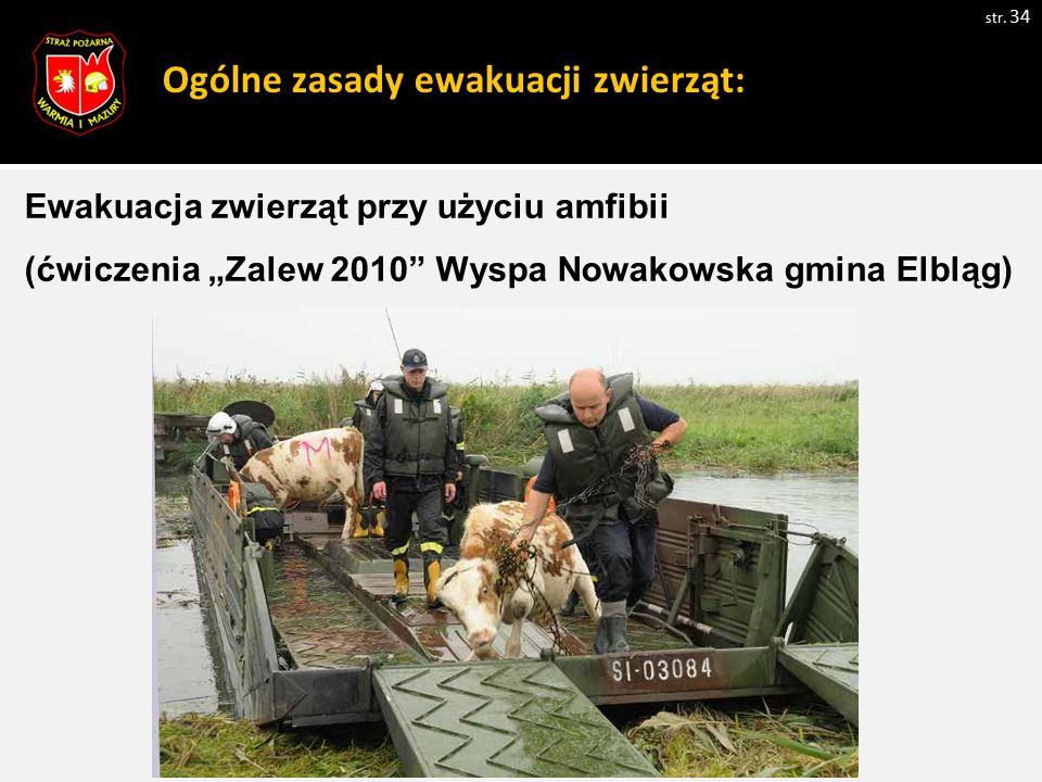 Ogólne zasady ewakuacji zwierząt: