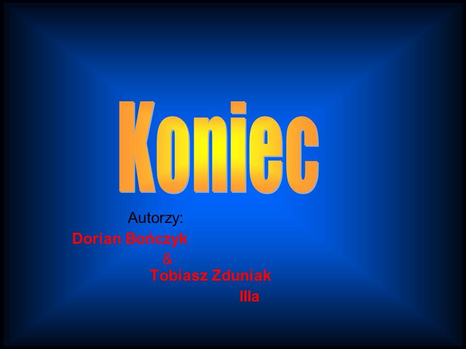 Koniec Autorzy: Dorian Bończyk & Tobiasz Zduniak IIIa