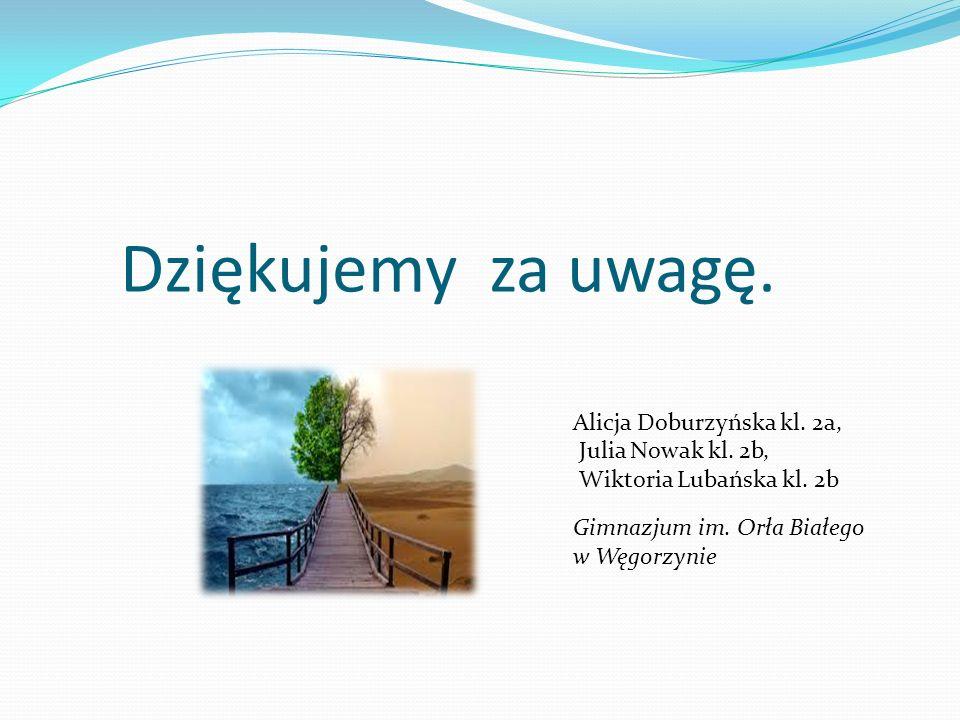Dziękujemy za uwagę. Alicja Doburzyńska kl. 2a, Julia Nowak kl. 2b,