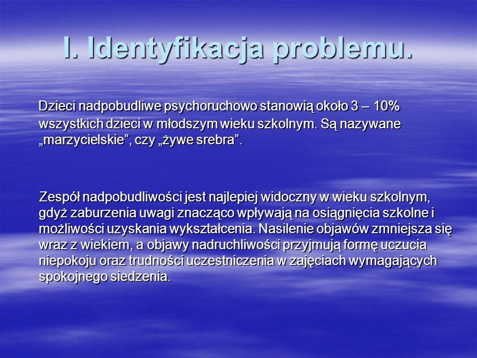 I. Identyfikacja problemu.