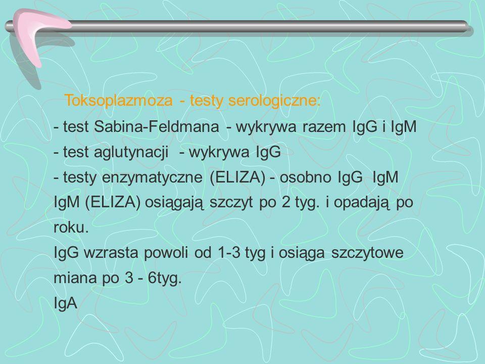 Toksoplazmoza - testy serologiczne:
