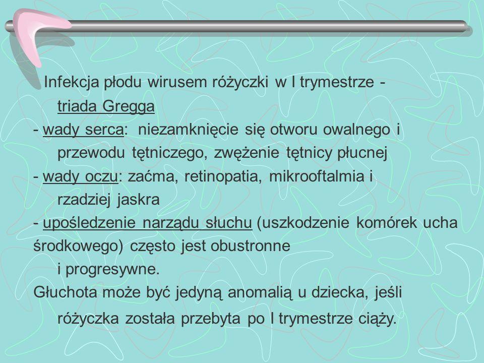 Infekcja płodu wirusem różyczki w I trymestrze -