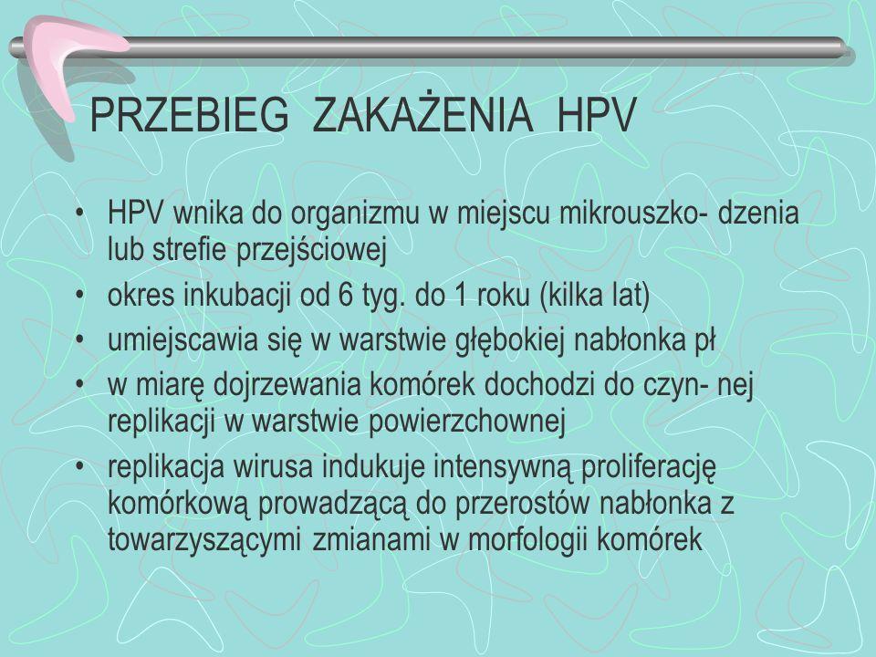 PRZEBIEG ZAKAŻENIA HPV