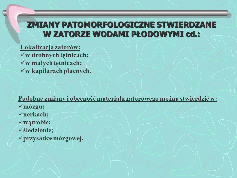 ZMIANY PATOMORFOLOGICZNE STWIERDZANE W ZATORZE WODAMI PŁODOWYMI cd.: