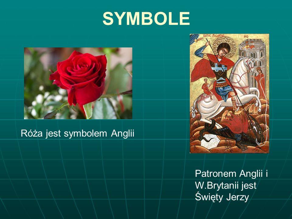 SYMBOLE Róża jest symbolem Anglii