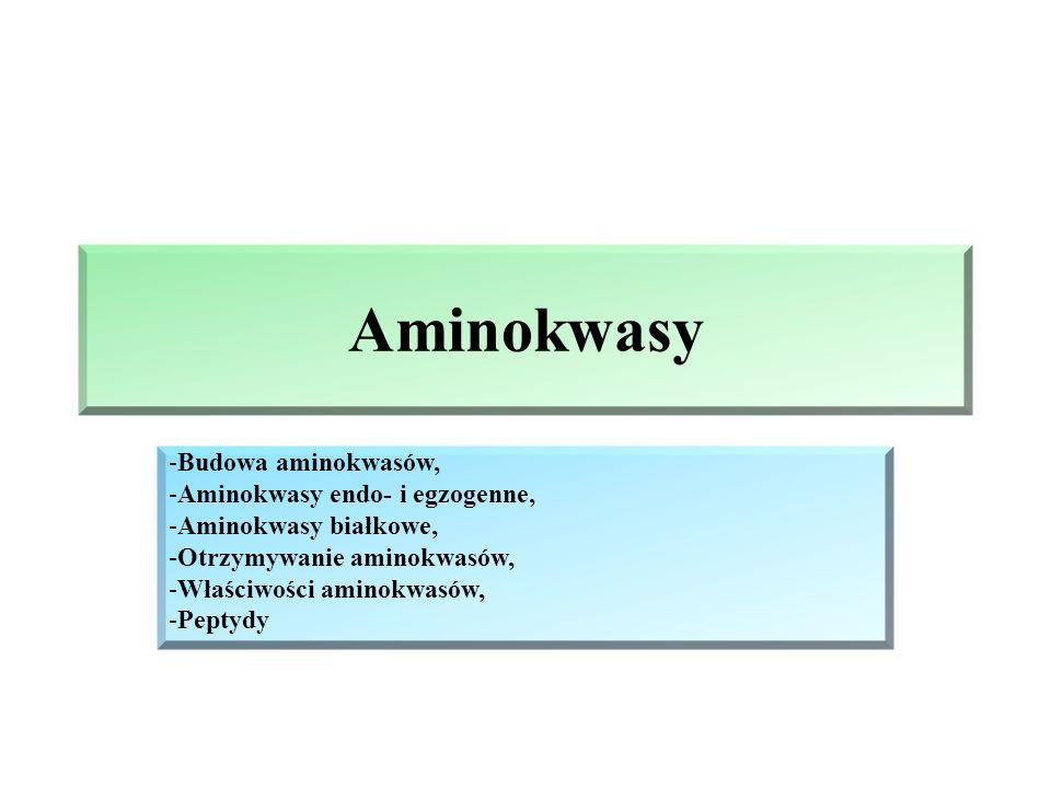 Aminokwasy Budowa aminokwasów, Aminokwasy endo- i egzogenne,