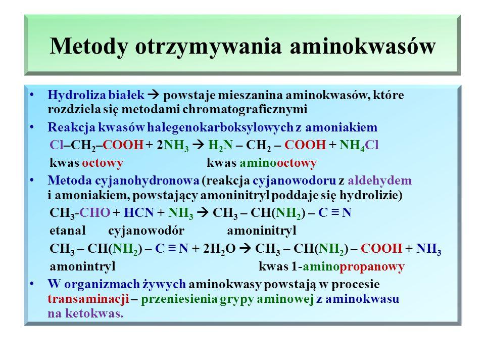 Metody otrzymywania aminokwasów