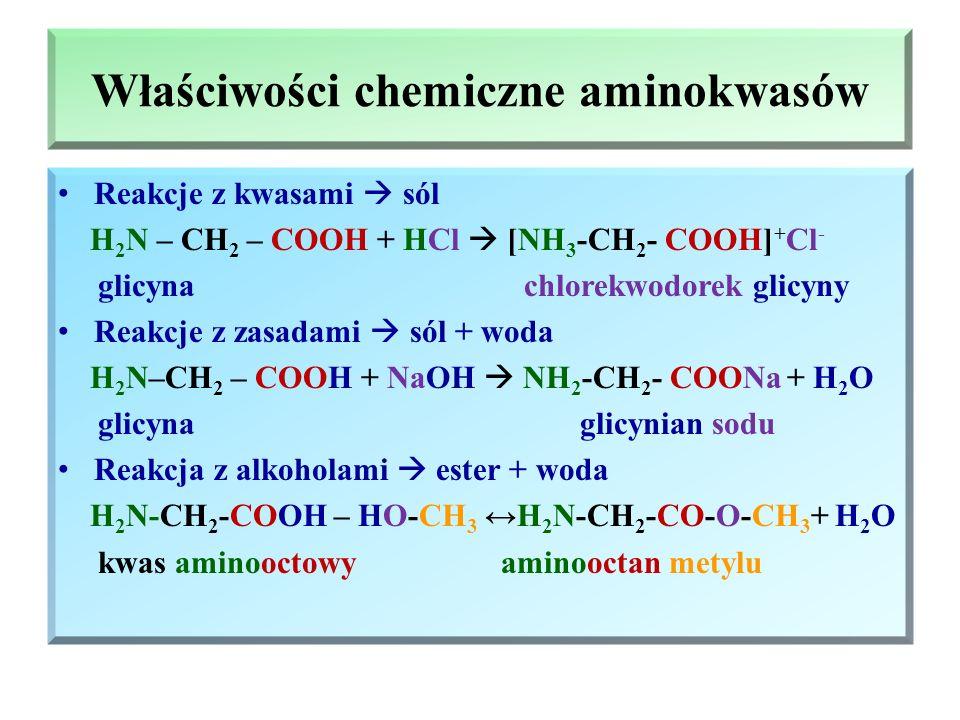 Właściwości chemiczne aminokwasów