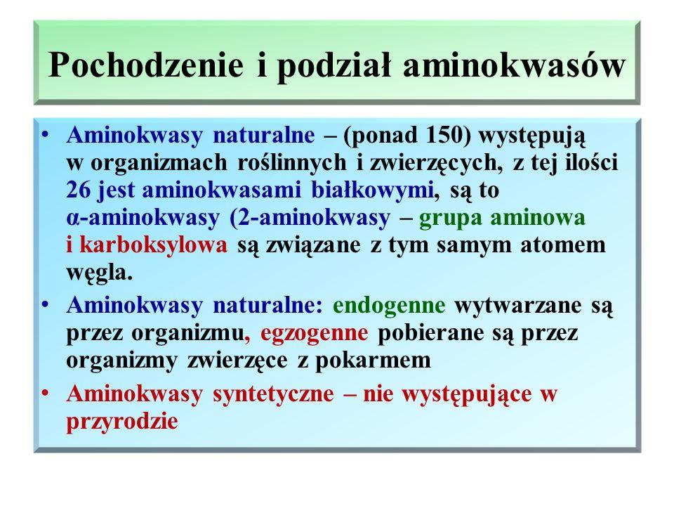 Pochodzenie i podział aminokwasów