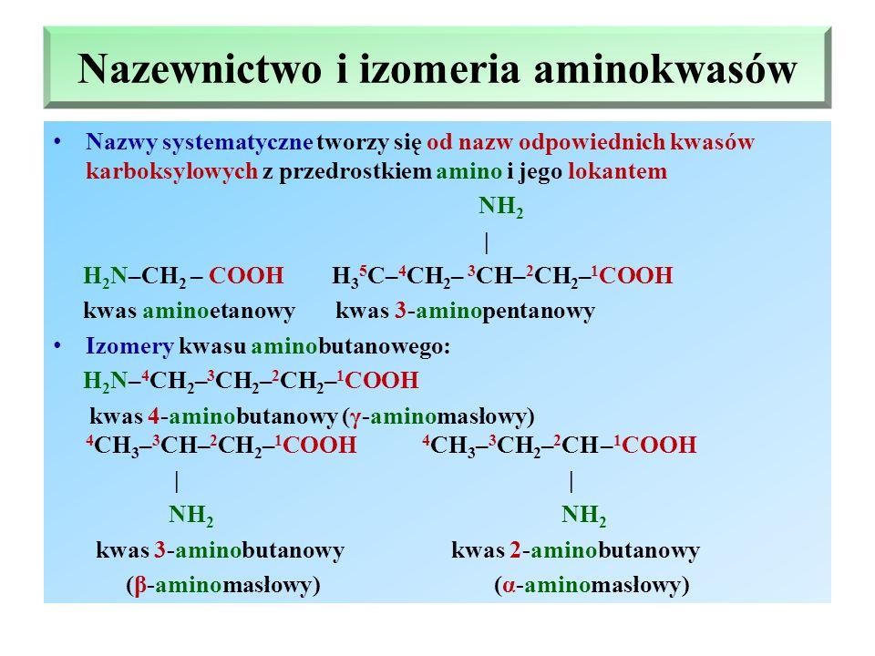 Nazewnictwo i izomeria aminokwasów