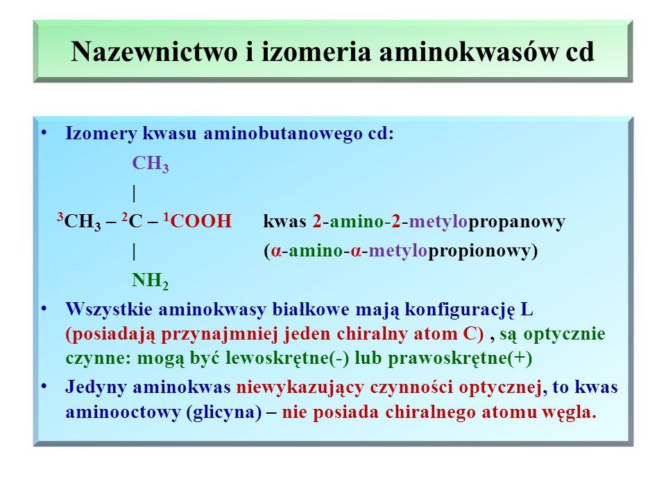 Nazewnictwo i izomeria aminokwasów cd