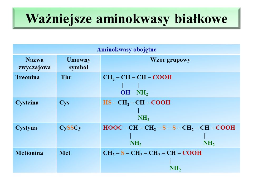 Ważniejsze aminokwasy białkowe