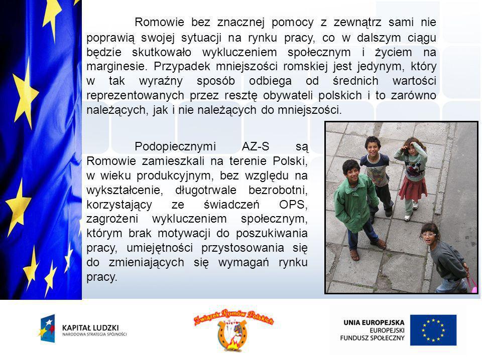 Romowie bez znacznej pomocy z zewnątrz sami nie poprawią swojej sytuacji na rynku pracy, co w dalszym ciągu będzie skutkowało wykluczeniem społecznym i życiem na marginesie. Przypadek mniejszości romskiej jest jedynym, który w tak wyraźny sposób odbiega od średnich wartości reprezentowanych przez resztę obywateli polskich i to zarówno należących, jak i nie należących do mniejszości.