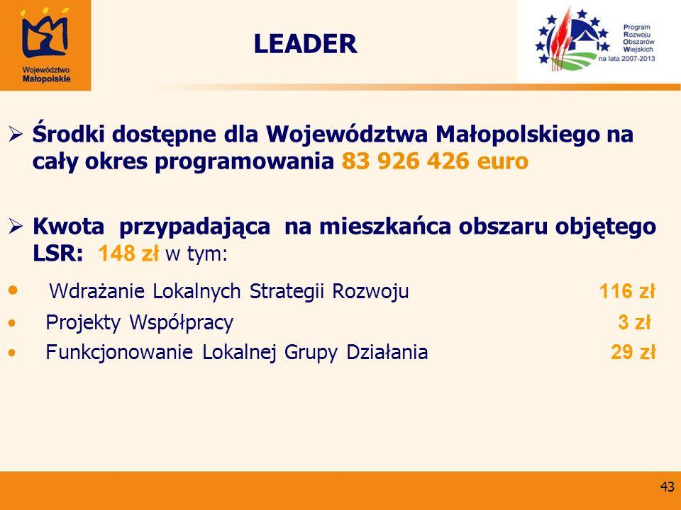 Wdrażanie Lokalnych Strategii Rozwoju 116 zł