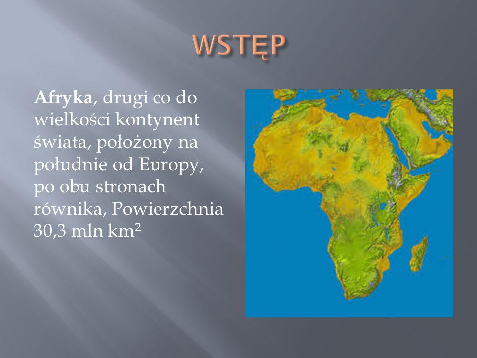 WSTĘP Afryka, drugi co do wielkości kontynent świata, położony na południe od Europy, po obu stronach równika, Powierzchnia 30,3 mln km2.