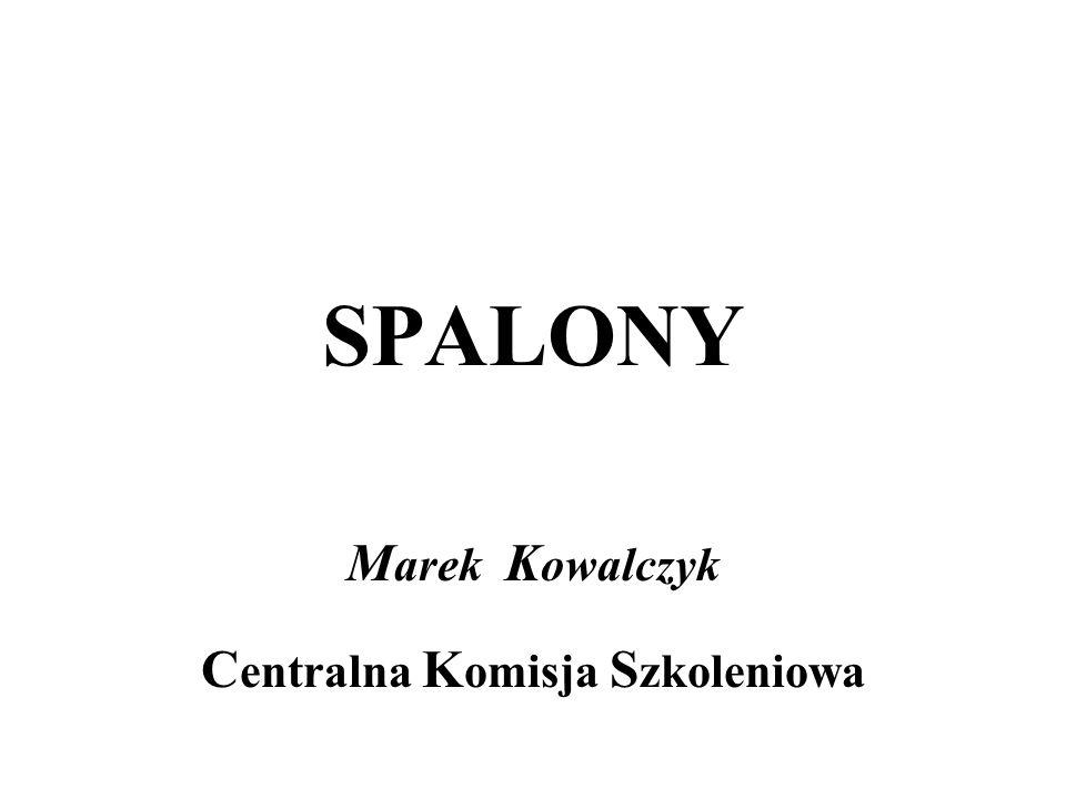 Marek Kowalczyk Centralna Komisja Szkoleniowa