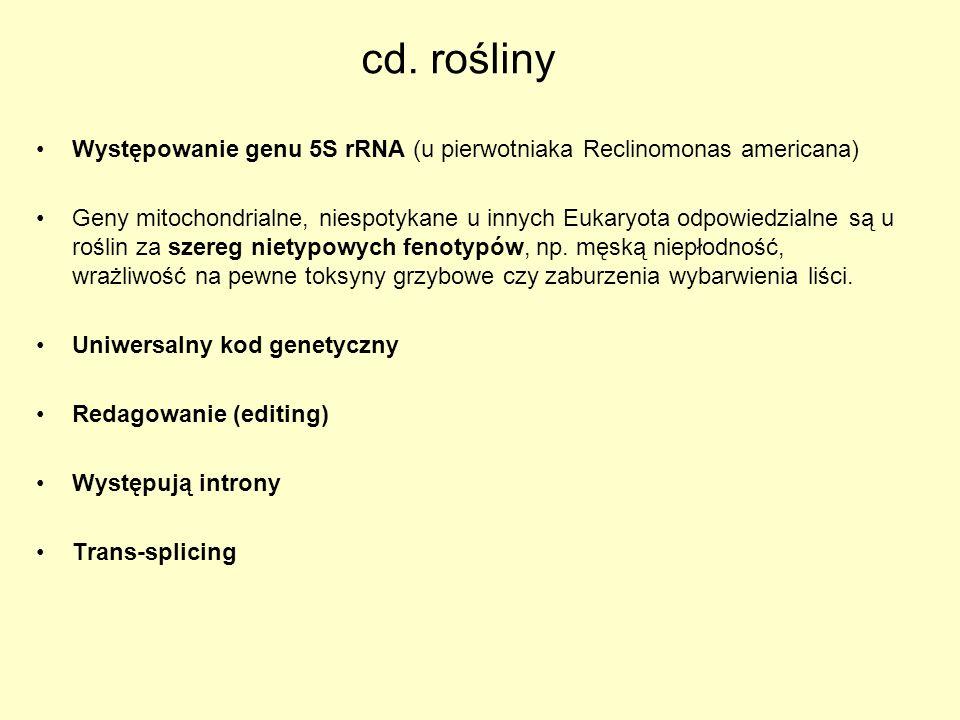 cd. rośliny Występowanie genu 5S rRNA (u pierwotniaka Reclinomonas americana)