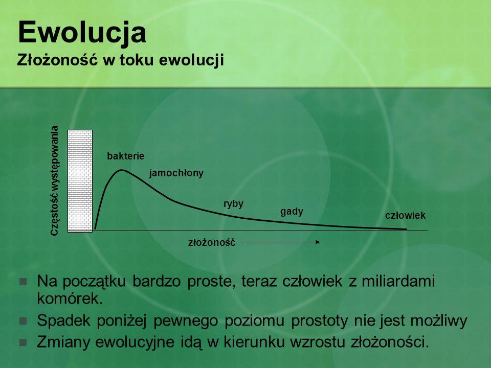 Ewolucja Złożoność w toku ewolucji