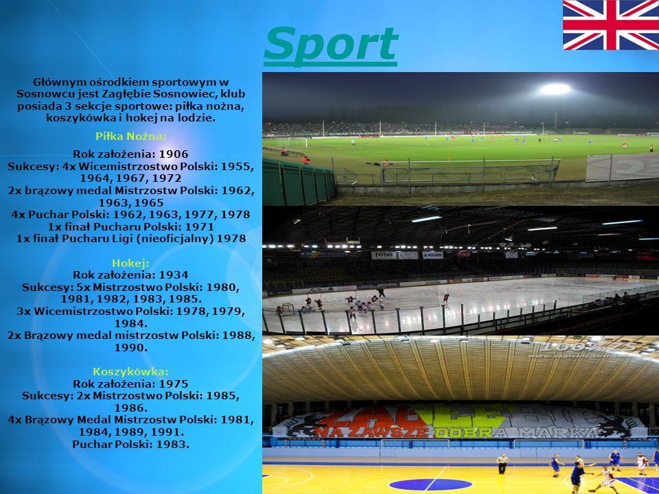 Sport Głównym ośrodkiem sportowym w Sosnowcu jest Zagłębie Sosnowiec, klub posiada 3 sekcje sportowe: piłka nożna, koszykówka i hokej na lodzie.