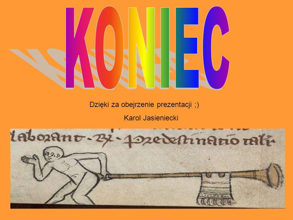 KONIEC Dzięki za obejrzenie prezentacji ;) Karol Jasieniecki