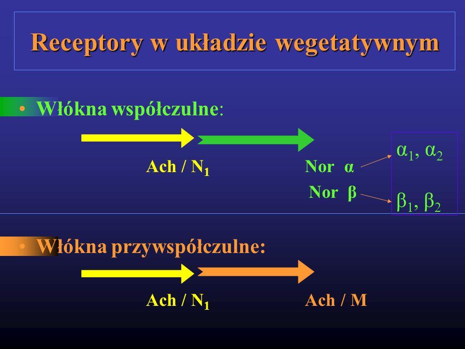 Receptory w układzie wegetatywnym