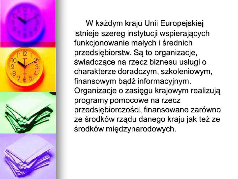 W każdym kraju Unii Europejskiej istnieje szereg instytucji wspierających funkcjonowanie małych i średnich przedsiębiorstw.
