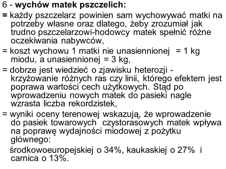 6 - wychów matek pszczelich: