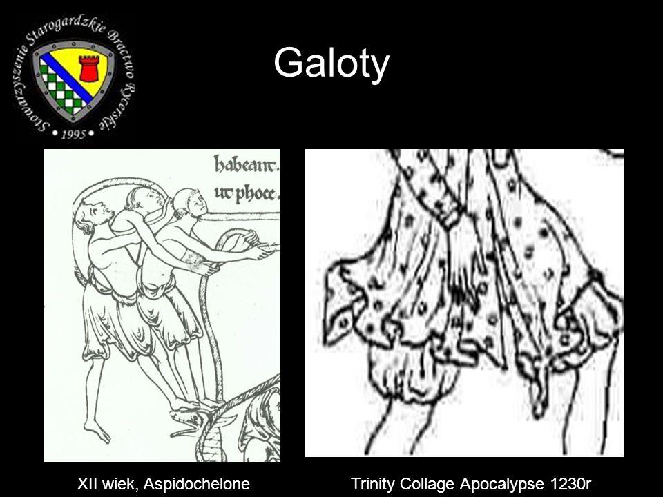 Galoty XII wiek, Aspidochelone Trinity Collage Apocalypse 1230r