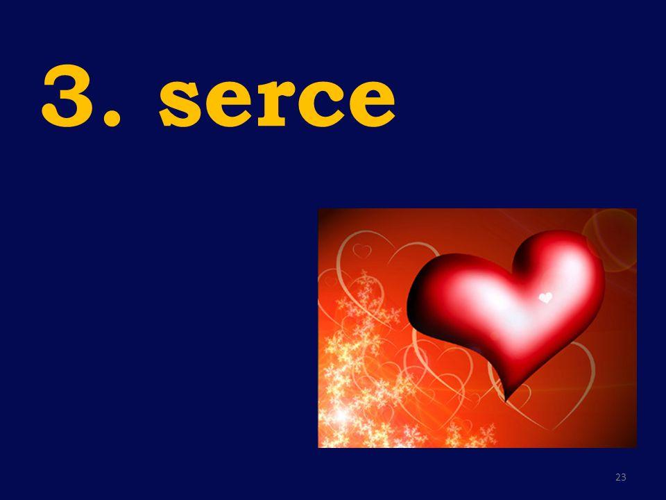 3. serce