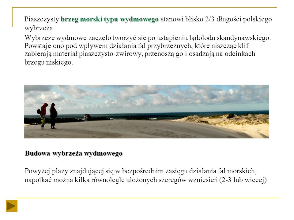 Piaszczysty brzeg morski typu wydmowego stanowi blisko 2/3 długości polskiego wybrzeża.