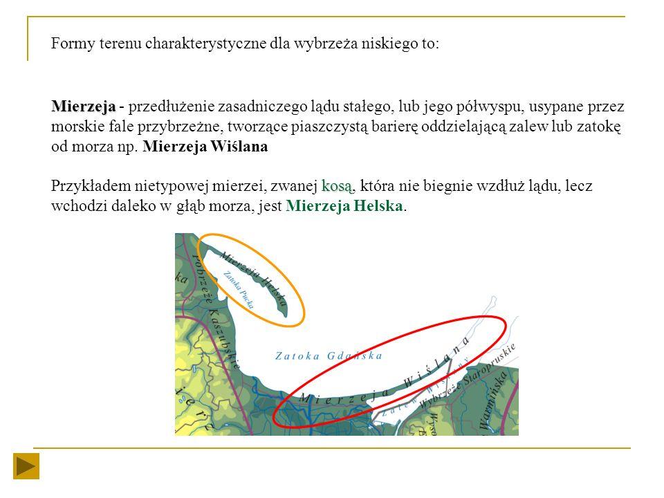 Formy terenu charakterystyczne dla wybrzeża niskiego to: