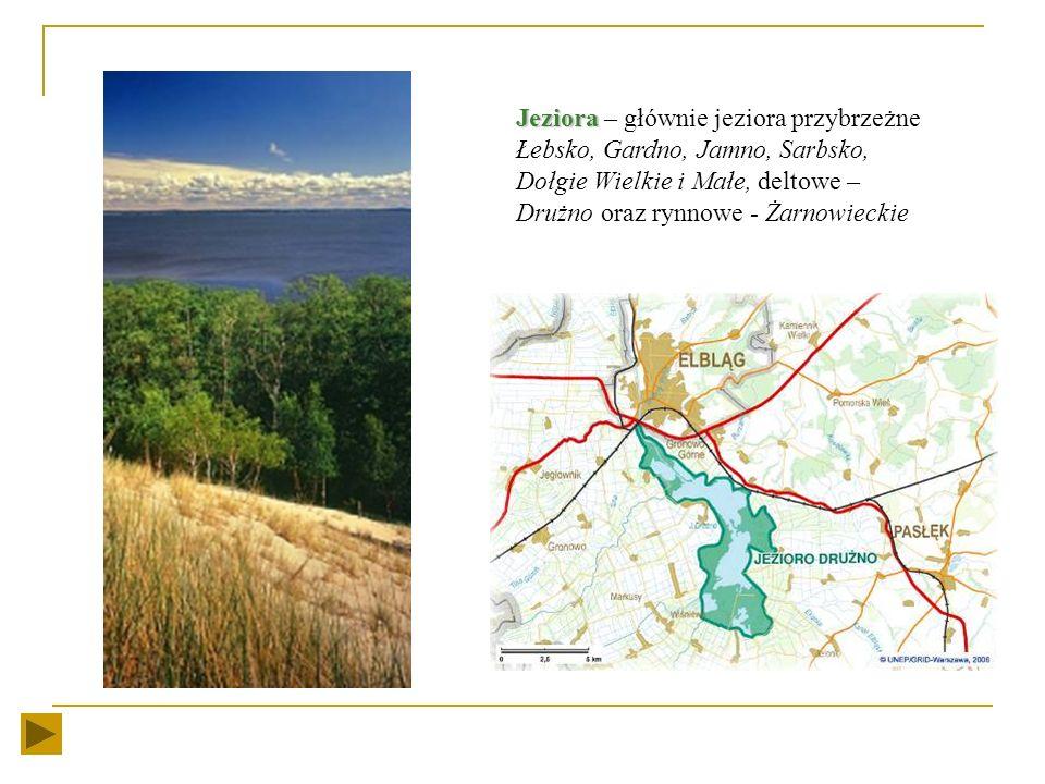 Jeziora – głównie jeziora przybrzeżne Łebsko, Gardno, Jamno, Sarbsko, Dołgie Wielkie i Małe, deltowe – Drużno oraz rynnowe - Żarnowieckie