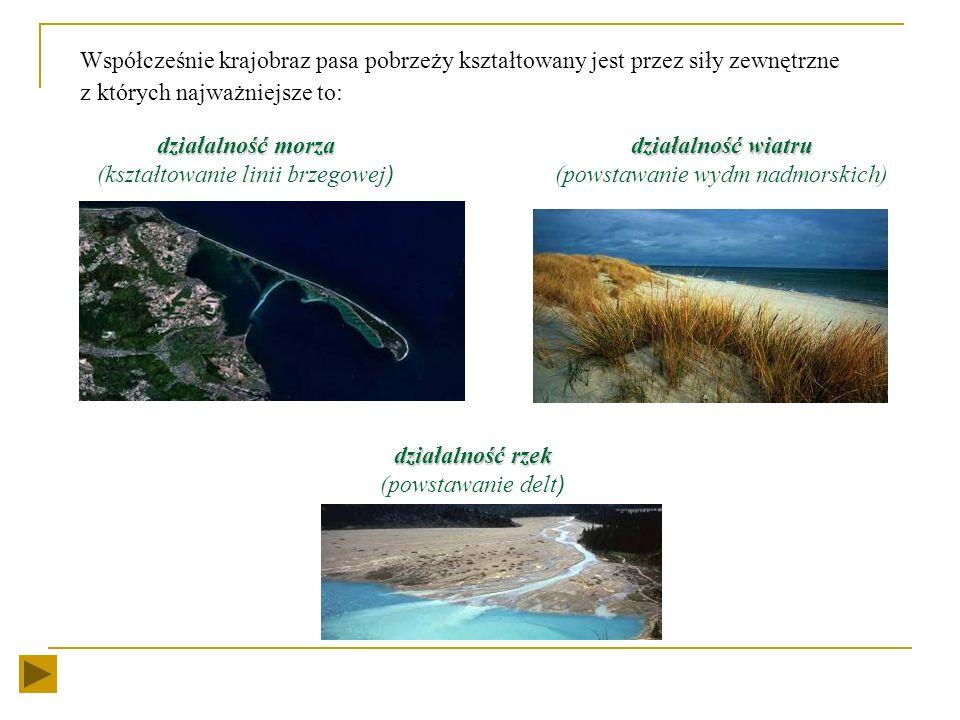 Współcześnie krajobraz pasa pobrzeży kształtowany jest przez siły zewnętrzne z których najważniejsze to: