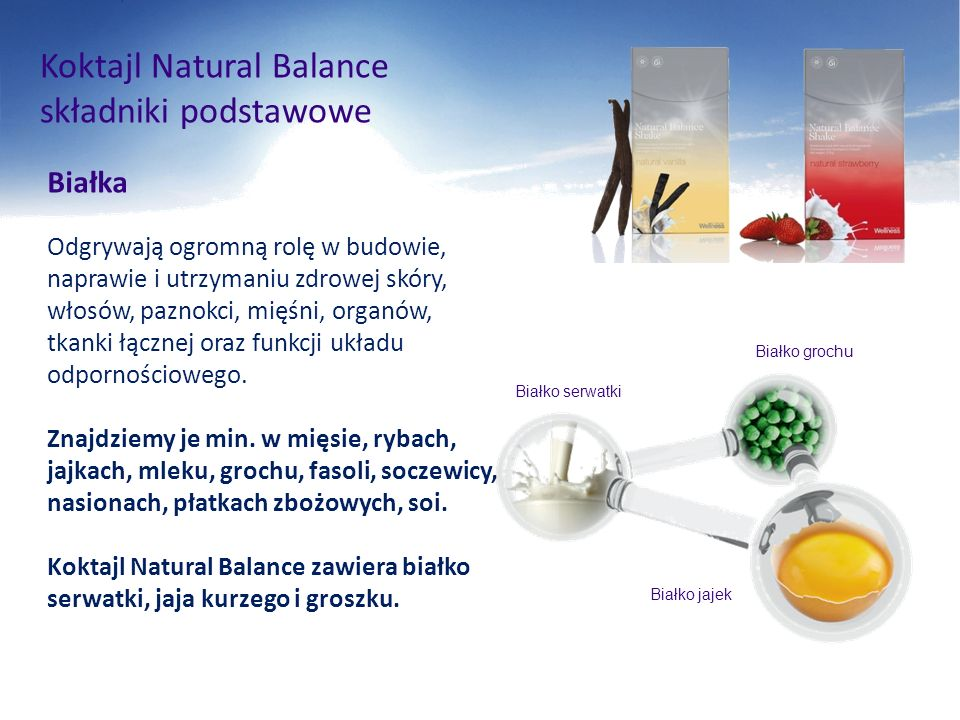 Koktajl Natural Balance składniki podstawowe