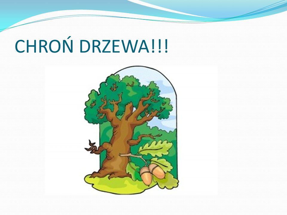 CHROŃ DRZEWA!!!