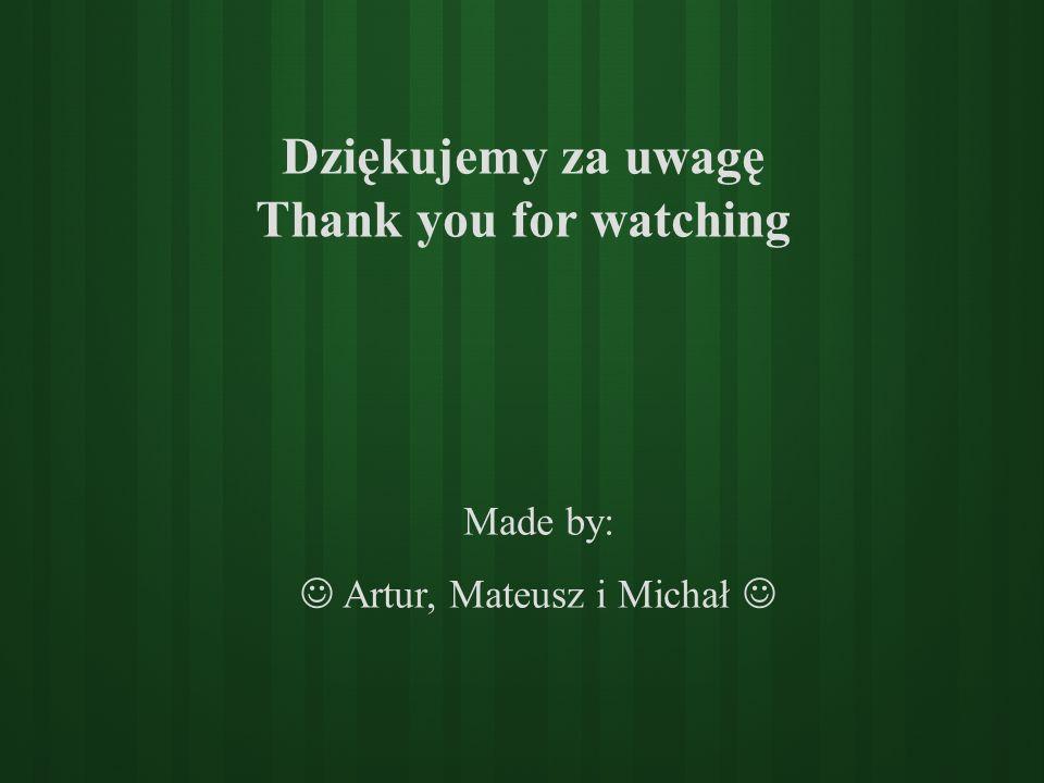 Dziękujemy za uwagę Thank you for watching
