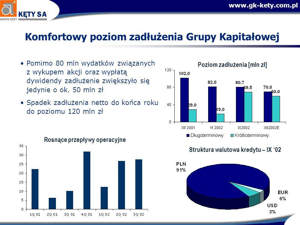Komfortowy poziom zadłużenia Grupy Kapitałowej