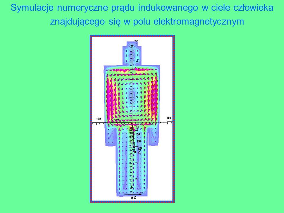 Symulacje numeryczne prądu indukowanego w ciele człowieka znajdującego się w polu elektromagnetycznym