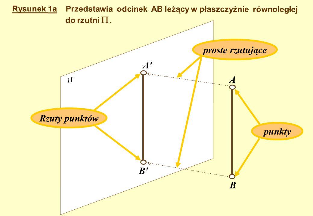 proste rzutujące A A Rzuty punktów punkty B B