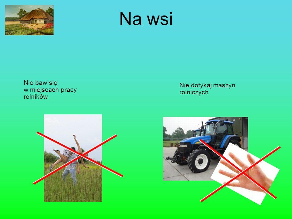 Na wsi Nie baw się w miejscach pracy rolników