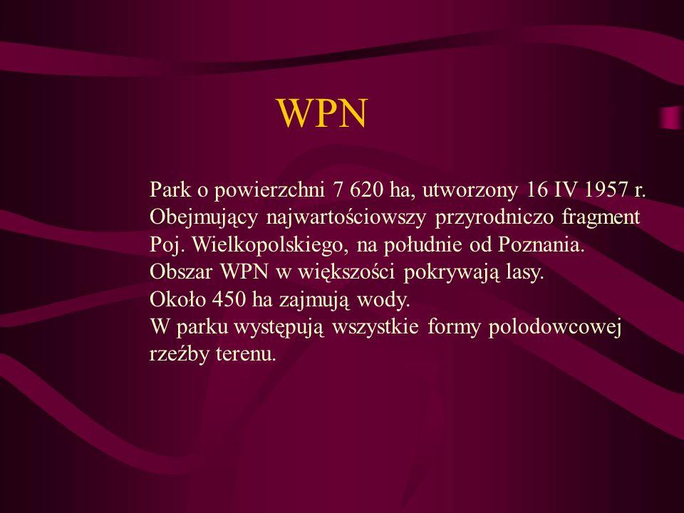 WPN Park o powierzchni 7 620 ha, utworzony 16 IV 1957 r.